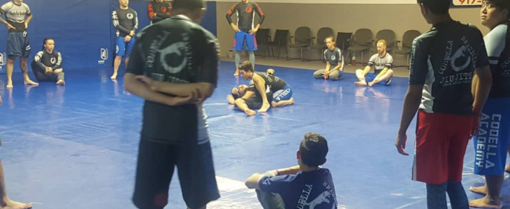 Brazilian Jiu-Jitsu for Beginners